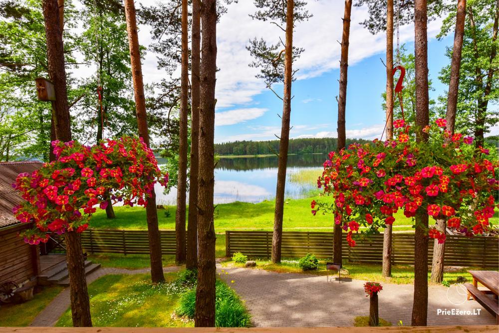 Sodyba Molėtų rajone prie Bebrusų ežero Giedrita - 1