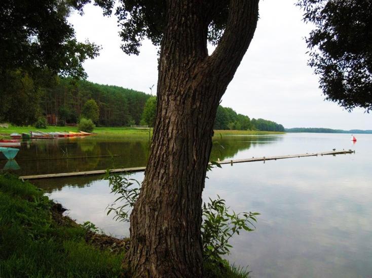 Karolio sodyba ant Lūšio ežero kranto - 5