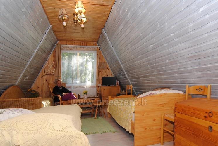 Kaimo turizmo sodyba Poilsis prie Avirio - 21