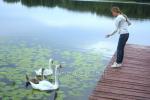 Ilonos Šerėnienės sodyba Ignalinos rajone prie ežero - 4