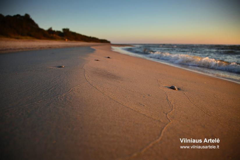 Poilsis tarp Olando kepurės ir Plazės ežero. KARKLĖS SODYBA - 65