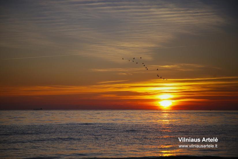 Poilsis tarp Olando kepurės ir Plazės ežero. KARKLĖS SODYBA - 68