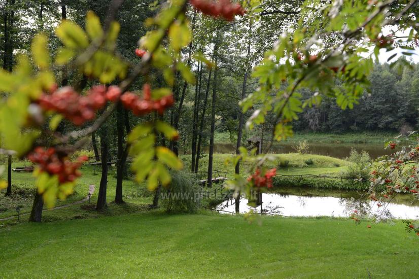 Turauskų kaimo turizmo sodyba Varėnos rajone - 21