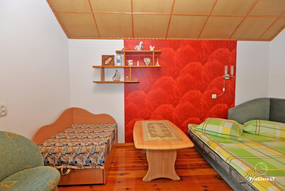Apartamentai Druskininkų senamiestyje, yra vaikų žaidimo aikštelė, didelis kiemas, garažas motociklams - 43