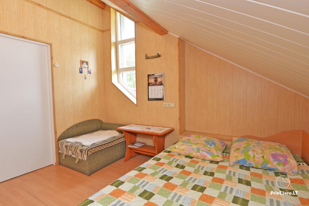 Apartamentai Druskininkų senamiestyje, yra vaikų žaidimo aikštelė, didelis kiemas, garažas motociklams - 29