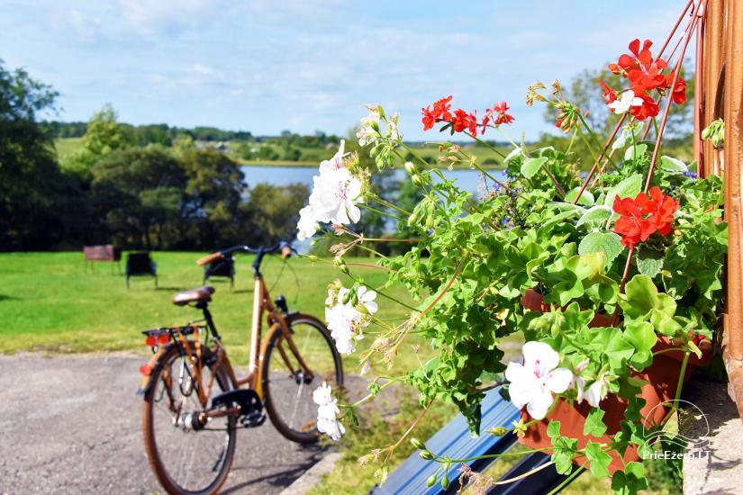 Vila Janus ant ežero kranto – vestuvėms, renginiams, poilsiui - 10