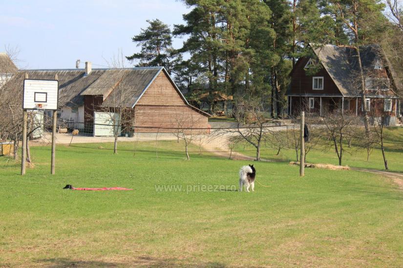 Sodyba Pas Nijolę - sodybos, namelių nuoma prie Pakalo ežero - 28