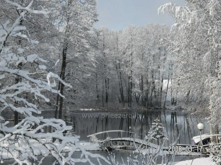 Sodyba Pas Nijolę - sodybos, namelių nuoma prie Pakalo ežero - 37