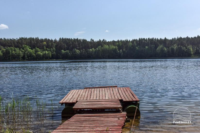 Šakarvos sodyba Ignalinos rajone - 43
