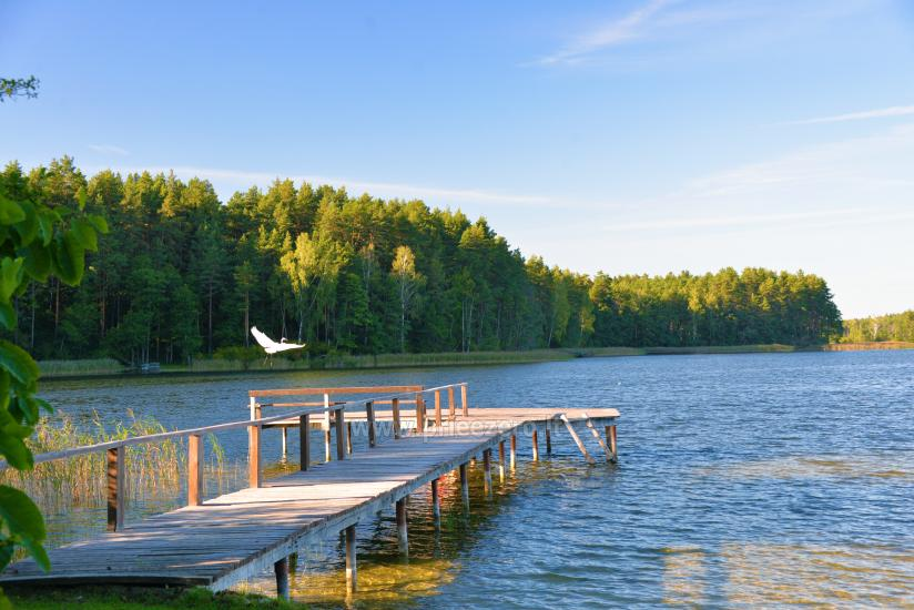 Sodyba Molėtų rajone prie Bebrusų ežero - 12