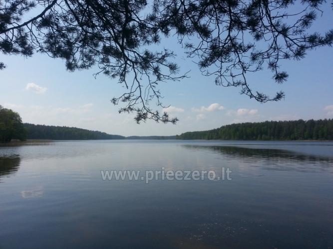 Sodyba Molėtų rajone prie Siesarčio ežero - 14