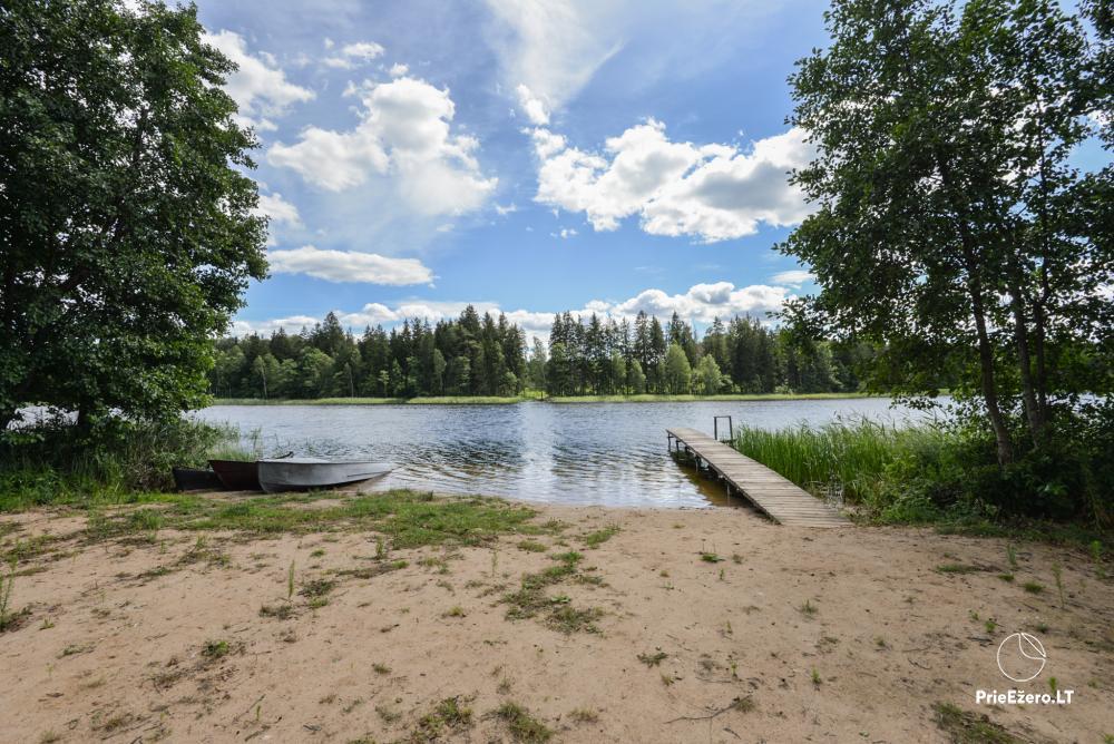 Nerijaus Sodyba Lazdijų rajone 20 km nuo Druskininkų - 10