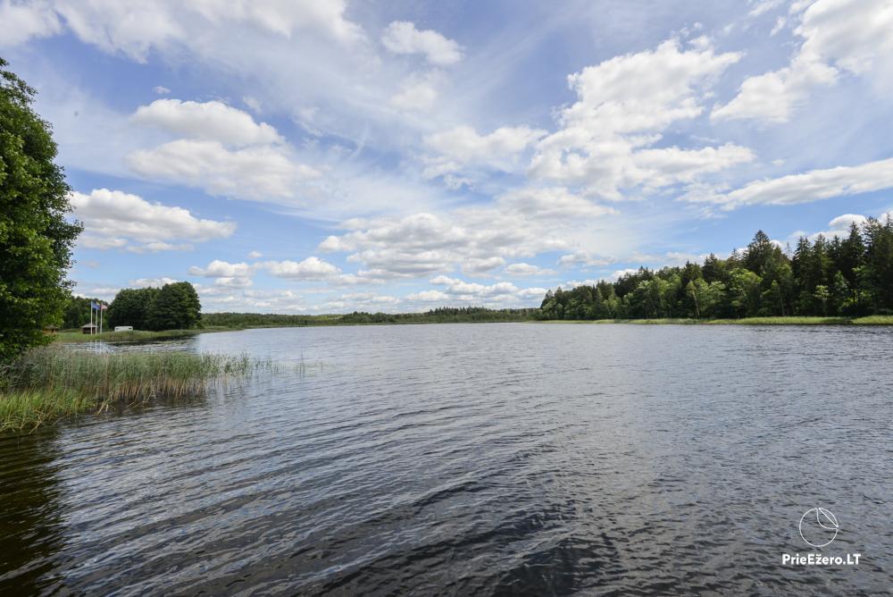 Nerijaus Sodyba Lazdijų rajone 20 km nuo Druskininkų - 5