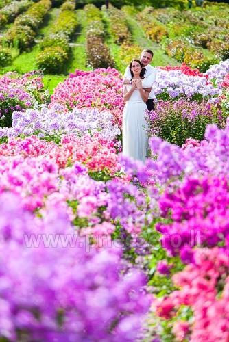 Vestuvių fotografas linksmiems žmonėms - 4