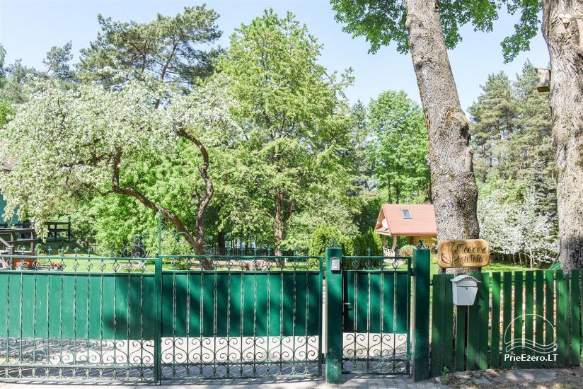 Medaus pirtelė romantiškam laikui Trakų rajone prie ežero Skaistis - 5