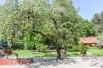 Medaus pirtelė romantiškam laikui Trakų rajone prie ežero Skaistis - 7