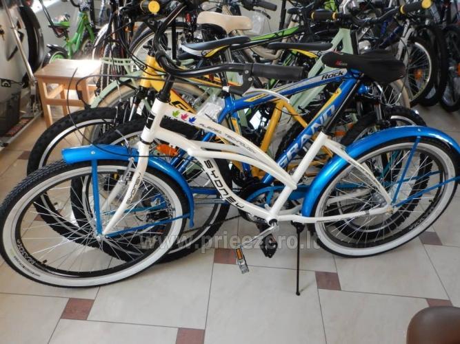 Mirasta - dviračių nuoma Druskininkuose - 1