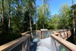 Anykščių šilelio medžių lajų takas - 4