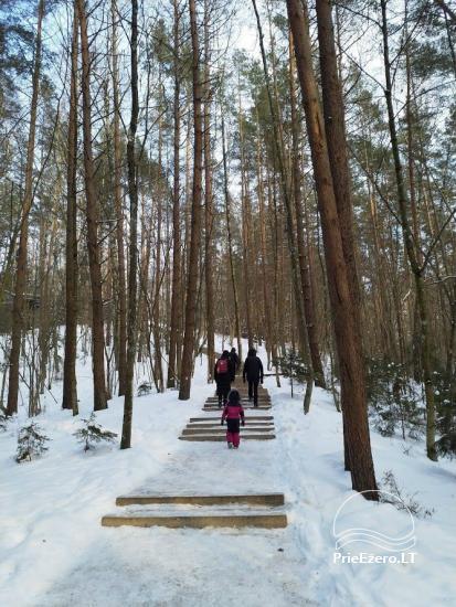 Anykščių šilelio medžių lajų takas - 18