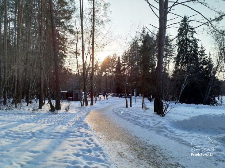 Anykščių šilelio medžių lajų takas - 20
