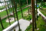 Baidarėmis Bebrusų ežere, Žeimena, Šventąja. Sodyba Molėtų rajone Giedrita - 5