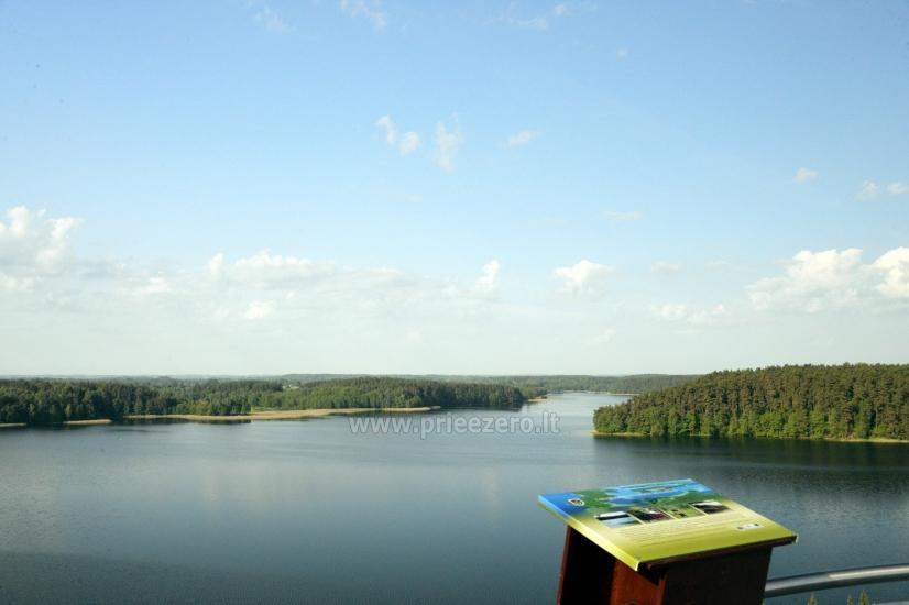 Labanoro regioninio parko (Mindūnų) apžvalgos bokštas - 4