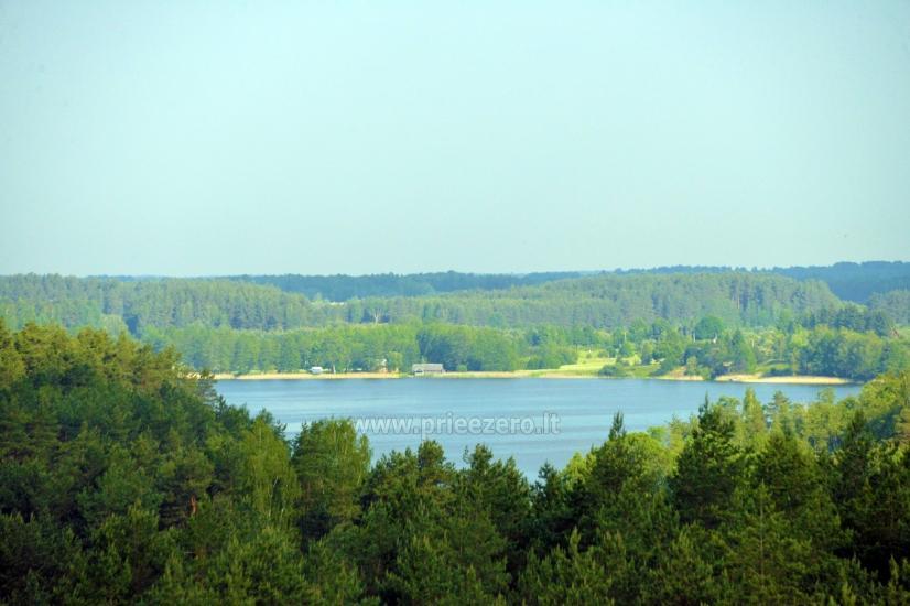 Labanoro regioninio parko (Mindūnų) apžvalgos bokštas - 6