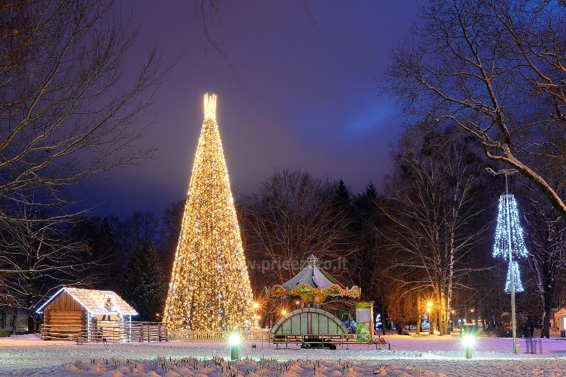 Kalėdų eglės įžiebimas Druskininkuose. 2020 m. gruodžio 4 d. - 1
