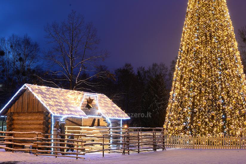 Kalėdų eglės įžiebimas Druskininkuose. 2020 m. gruodžio 4 d. - 3