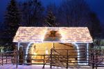 Kalėdų eglės įžiebimas Druskininkuose. 2020 m. gruodžio 4 d. - 4