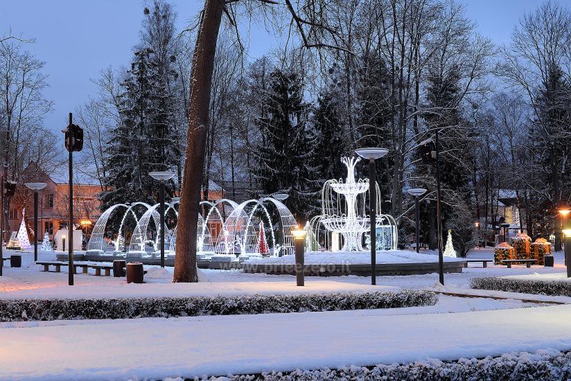 Kalėdų eglės įžiebimas Druskininkuose. 2020 m. gruodžio 4 d. - 9