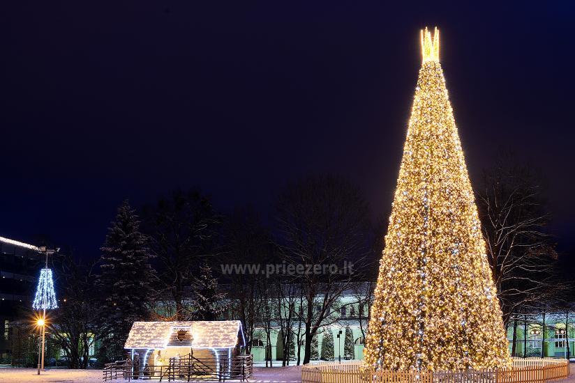Kalėdų eglės įžiebimas Druskininkuose. 2020 m. gruodžio 4 d. - 2