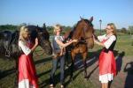 Jojimas žirgais Ventspilio rajone svečių namuose prie Ventos upės Ventaskrasti - 5