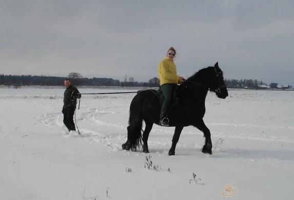 Jojimas žirgais Ventspilio rajone svečių namuose prie Ventos upės Ventaskrasti - 8