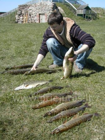 Valčių nuoma, žvejyba Ventos upėje, Svečių namai ir kempingas Ventpilio rajone Ventaskrasti - 3
