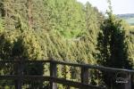 Kadagių slėnis – Arlaviškių pažintinis takas - 5