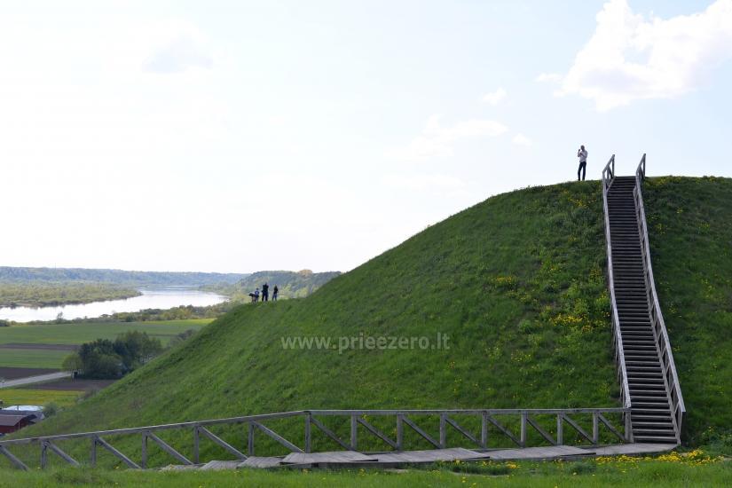 Palemono kalnas (Seredžiaus piliakalnis) Jurbarko rajone - 4