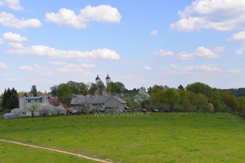 Palemono kalnas (Seredžiaus piliakalnis) Jurbarko rajone - 8