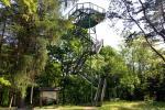 Apžvalgos bokštas Rumšiškėse - 3