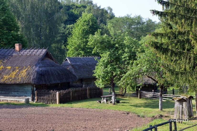 Lietuvos liaudies buities muziejus Rumšiškėse - 19