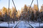 Mikierių (beždžionių) tiltas per Šventosios upę Anykščių rajone - 3