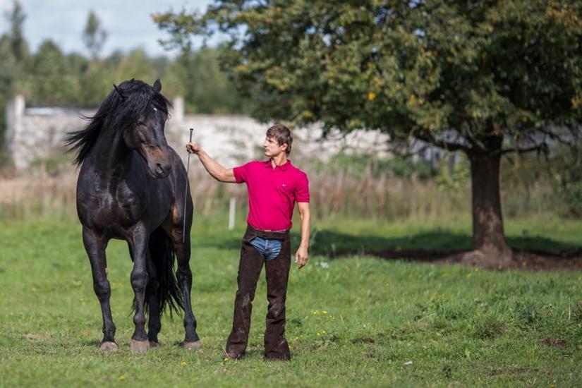 Žirgo ir žmogaus draugystė, jojimo pamokos, žirgų apjojimas ir dresūra - 1