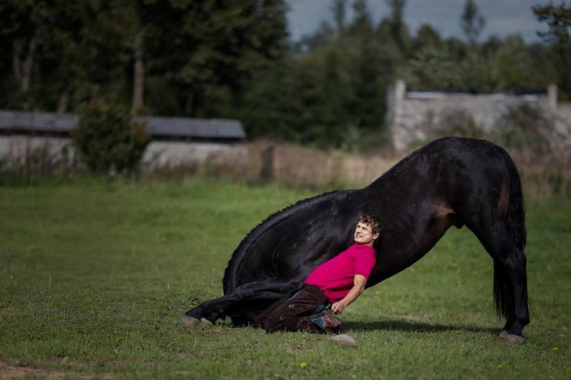 Žirgo ir žmogaus draugystė, jojimo pamokos, žirgų apjojimas ir dresūra - 6