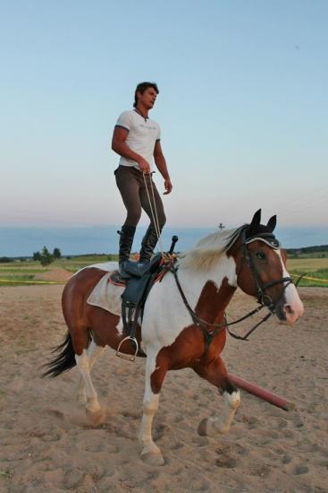 Žirgo ir žmogaus draugystė, jojimo pamokos, žirgų apjojimas ir dresūra - 12