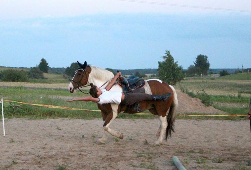 Žirgo ir žmogaus draugystė, jojimo pamokos, žirgų apjojimas ir dresūra - 15