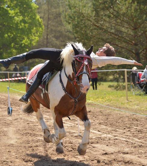 Žirgo ir žmogaus draugystė, jojimo pamokos, žirgų apjojimas ir dresūra - 18