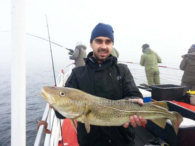 Laivo  nuoma Klaipėdoje. Pramoginė menkių žvejyba Baltijos jūroje laivu BRIZO - 7