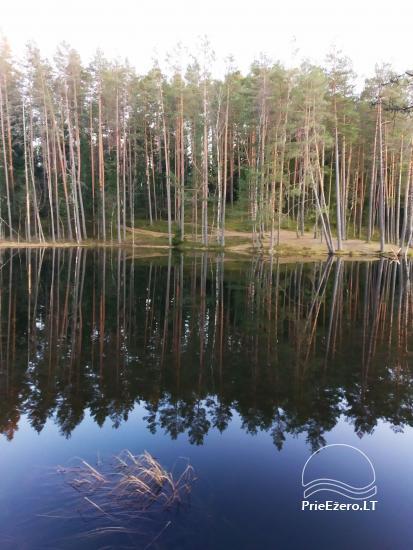 Pėsčiųjų žygiai po Labanoro regioninį parką - 1