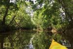 Baidarių, stovyklavietės nuoma prie Verknės upės, netoli Birštono - 10