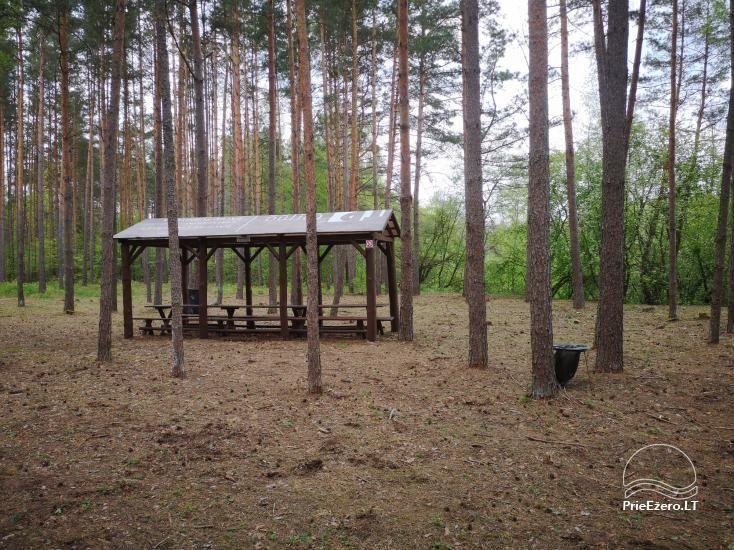 Stovyklavietės nuoma prie Baltosios Ančios upės kranto - 7